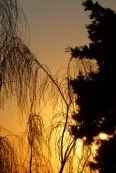 Sun sets