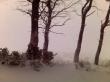Low res snow *