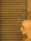 3B - Bald, Blind & Beautiful